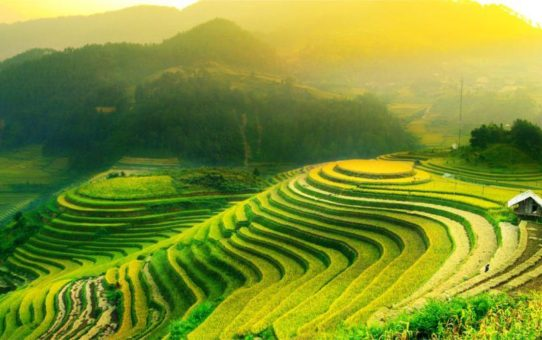 Праздник жатвы риса на Бали