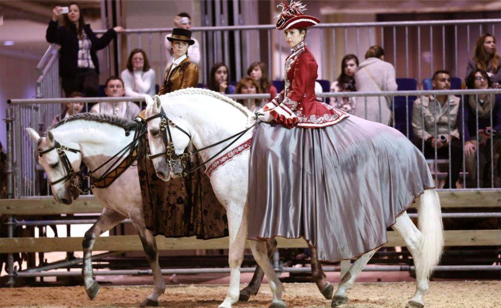 все конное шоу картинки делают