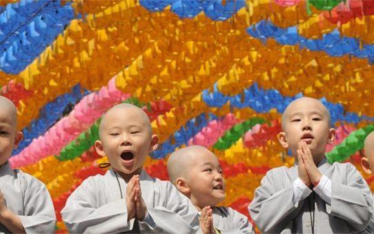 Фестиваль цветов хана мацури в Японии