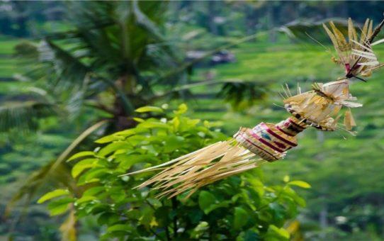 Праздник Кунинган в деревне Мунггу