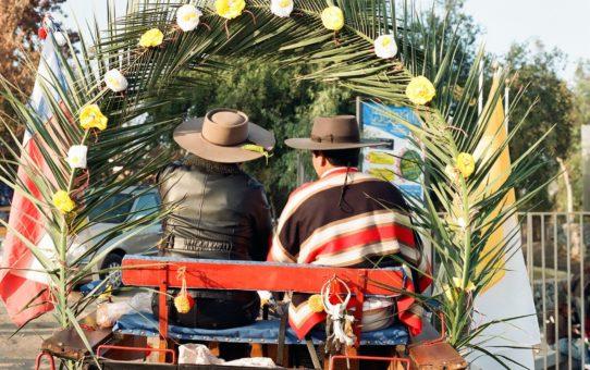 Фестиваль Квазимодо в Чили