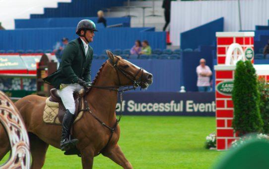 Дублинское конное шоу