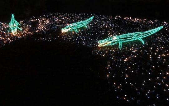 Рождественские огни в Луизиане