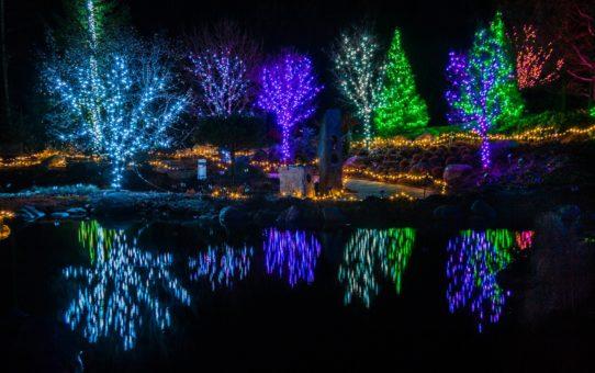 Рождественские огни в штате Мэн