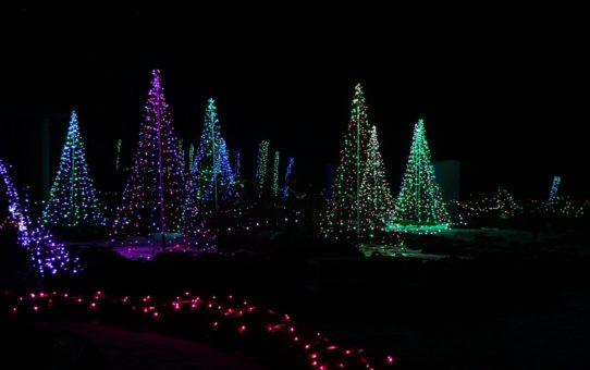 Рождественские огни в Массачусетсе