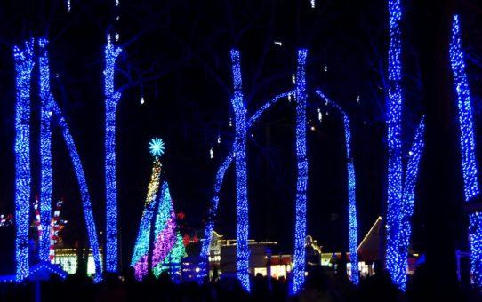 Рождественские огни в Нью-Джерси