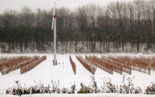 Ниагарский фестиваль ледяного вина в Ниагара-Фолс