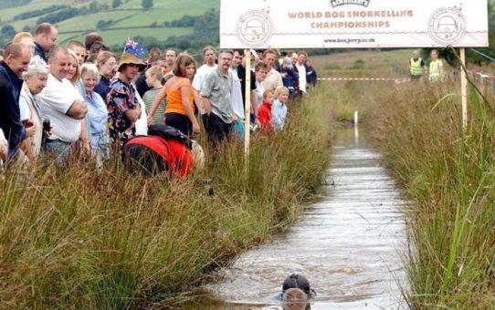Чемпионат Rude Health Bog по сноркелингу в Уэльсе