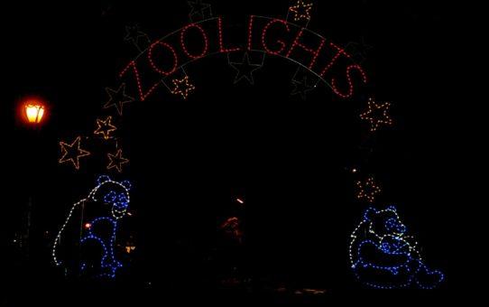 Рождественские огни в Вашингтоне, округ Колумбия