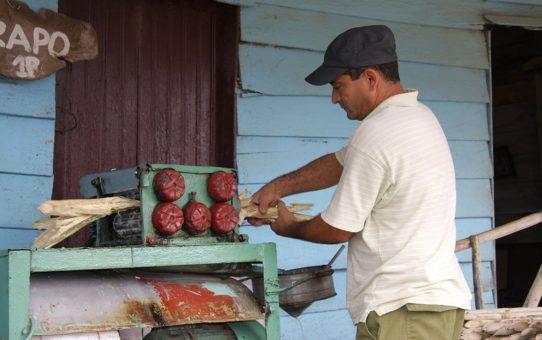 Кубинский напиток Гуарапо