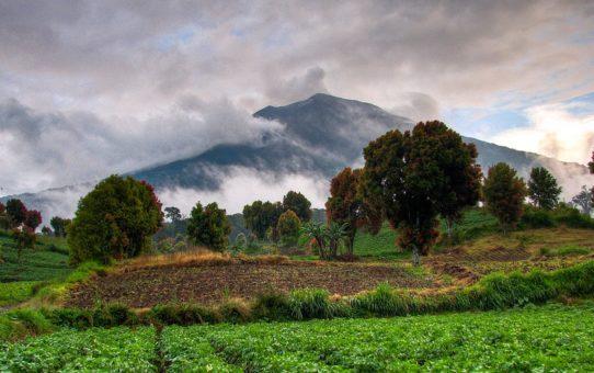 Восхождение на гору Керинчи, Индонезия