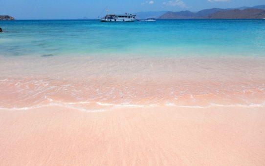 Розовый пляж на острове Комодо, Индонезия