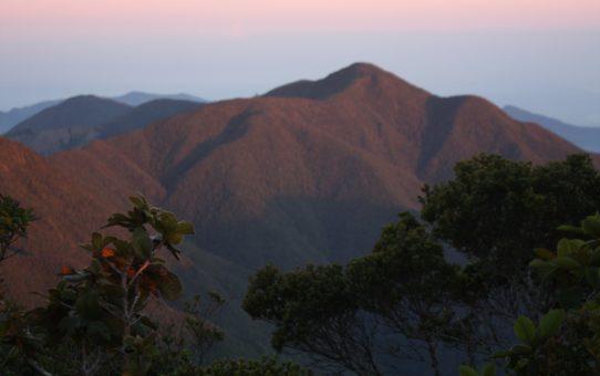 Поход на пик Голубой горы, Ямайка