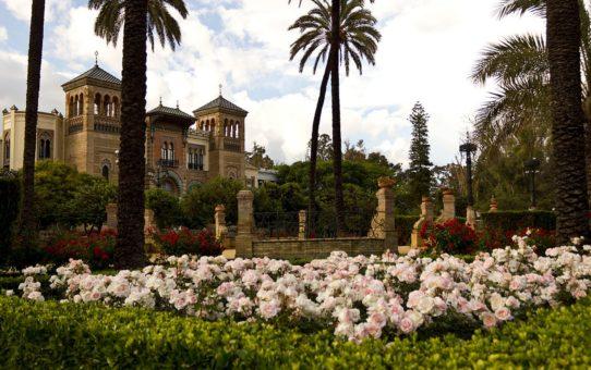 Цветущий сезон в Севильи