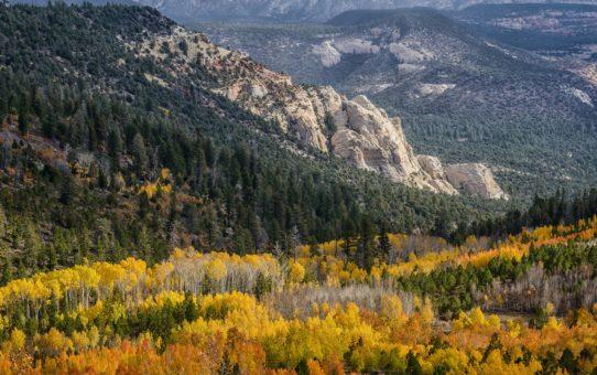 Национальный лес Дикси в штате Юта