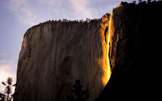 Падение хвоща или Огнепад в Калифорнии